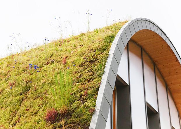 Casa con techo vegetal cambia de color según la estación del año (2)
